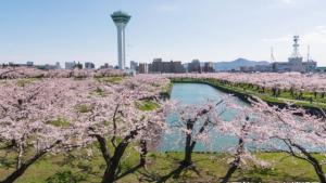 2017年4月函館イベントカレンダー