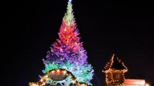【2018/12/1~25】2018はこだてクリスマスファンタジー