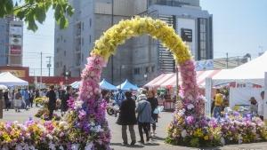 【フォトレポ】花と緑のフェスティバルでおいしいものを食べた 2019/6/8・9