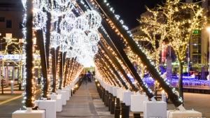 2019年11月函館イベントカレンダー