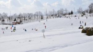 【2020/1/19】道南四季の杜公園 雪あかりパーク